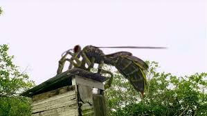 Giant wasps, you say? What tipped you off?